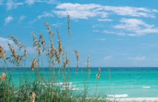 Long Beach Condo, Vacation Rental in Panama City Beach FL